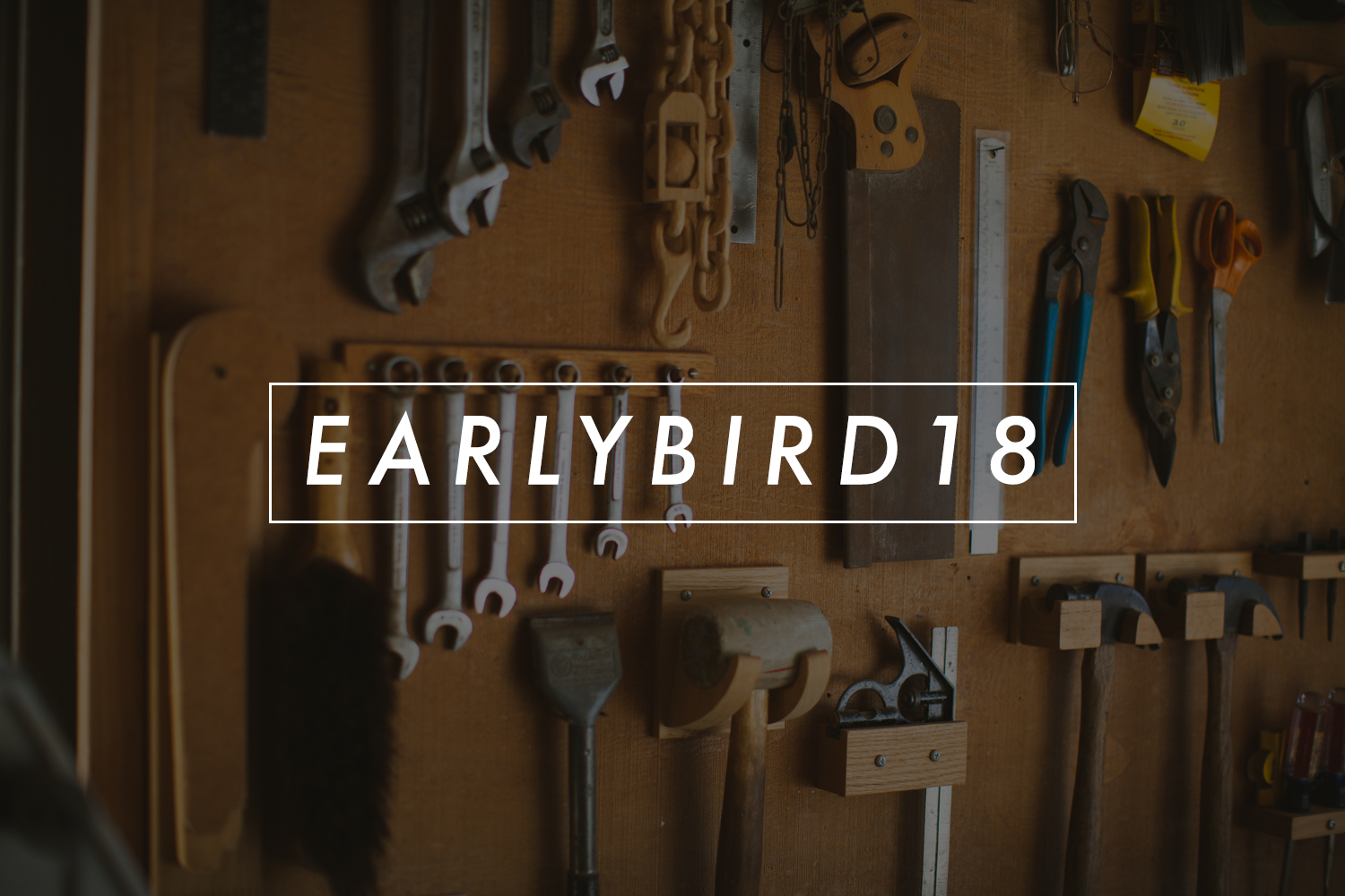 early_bird_18